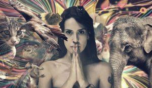 qui suis-je - animaux - visage femme - gratitude